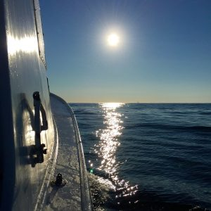 Enjoy the ocean and boating with movers Hampton NH.