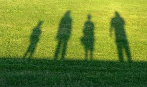 Shadows of the family at the lawn.