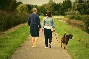 Couple walking a dog