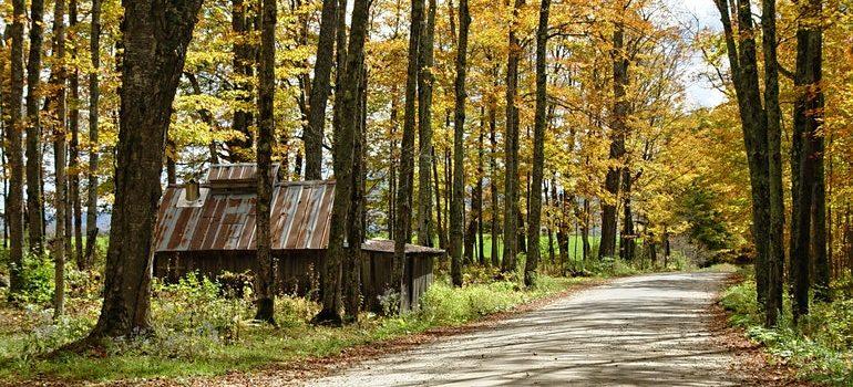 New England landscape.
