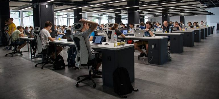 employees working in an office